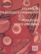 A glance in a refugee's cooking pot
